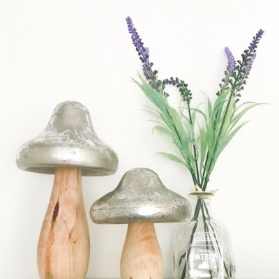 silver toadstool